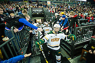 Vermont heads out onto the ice during the men's hockey game between the Vermont Catamounts and the Quinnipiac Bobcats in the championship game of the Friendship Four hockey tournament at the SSE Arena on Saturday evening November 26, 2016 in Belfast, Ireland. (BRIAN JENKINS/for the FREE PRESS)