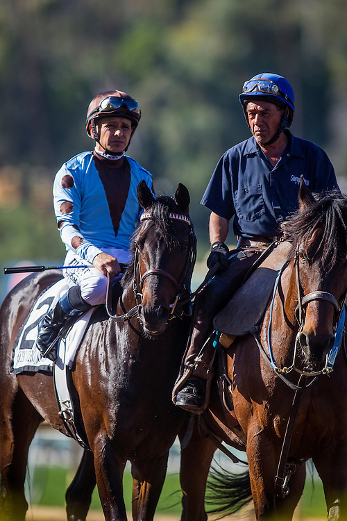 March 07 2015: Ocho Ocho Ocho and Mike Smith at Santa Anita Park in Arcadia CA. Alex Evers/ESW/CSM`