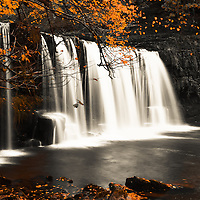 autumn leaves and waterfall backdrop portrait