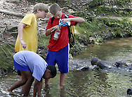 Caled McConnell (top left) watches as Cody Martin (right) pours a salamander they caught in Opelika park Thursday afternoon into a bottle for safe-keeping.  Adrien Parker (bottom) continues the search for salamanders and craw daddies as the other boys tend to the last critter.  Photo by Elliot Knight