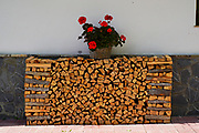 Stack of fire wood in a shed front view with a potted geranium