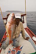 Pesca Las Perlas