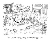 """It's Gerald's way of getting round the hosepipe ban."""