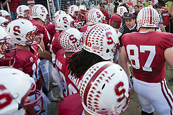 November 6, 2010; Stanford, CA, USA;  Stanford Cardinal head coach Jim Harbaugh (right) leads his team on to the field before the game against the Arizona Wildcats at Stanford Stadium.