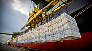 Worker unload a vessel of break bulk at at the Georgia Ports Authority Ocean Terminal, Wednesday, July, 19, 2017, in Savannah, Ga. (GPA Photo/Stephen B. Morton)