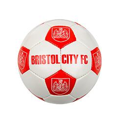 Bristol City October Product Shoot - Photo mandatory by-line: Rogan Thomson/JMP - Tel: 07966 386802 - 30/10/2013 - SPORT - FOOTBALL - Ashton Gate, Bristol.