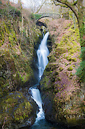 Aira Force, is a 65 ft waterfall set in ancient woodland near Ullswater, Cumbria.