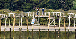 """A reporter and photographer walk back across the southern hemisphere's longest footbridge after attempting to interview New Zealand First Leader Winston Peters at his family home in Whananaki, Northland, New Zealand. Monday September 25, 2017.  Credit: SNPA / Malcolm Pullman """"NO ARCHIVING"""""""