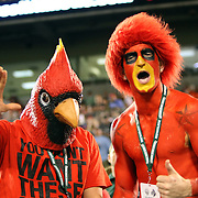Louisville Cardinals fans are seen during the NCAA Football Russell Athletic Bowl football game between the Louisville Cardinals and the Miami Hurricanes, at the Florida Citrus Bowl on Saturday, December 28, 2013 in Orlando, Florida. (AP Photo/Alex Menendez)