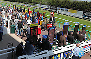 Bookkeepers and punters at Brighton Racecourse, Brighton & Hove, United Kingdom on 10 June 2015. Photo by Bennett Dean.