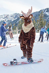 North America, United States, Washington, Crystal Mountain, man in moose costume on snowboard