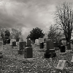 A graveyard in fall, with a bare tree prominently showing among the tombstones.