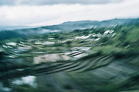 A blurred view of green rice terraces in Bali, Indonesia.