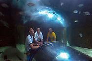 """ESP, Spanien: L'Oceanogràfic, zur Zeit das groesste Aquarium Euorpas, Jugendliche sitzen in einer Glaskuppel inmitten des Ozeans und staunen, Anlage """"Temperierte und Tropische Gewaesser"""", Stadt der Kuenste und Wissenschaften, Valencia, Valencia   ESP, Spain: L'Oceanogràfic, at the moment the largest Aquarium of Europe, teenager sitting under a glass cupola amind the ocean and marveling, """"Temperated and Tropical Waters"""", City of Arts and Sciences, Valencia, Valencia  """