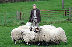 Willie Rennie, Kelty, 21-4-2017<br /> <br /> Willie Rennie feeds some sheep<br /> <br /> (c) David Wardle | Edinburgh Elite media