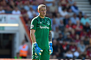 Jordan Pickford (1) of Everton during the Premier League match between Bournemouth and Everton at the Vitality Stadium, Bournemouth, England on 15 September 2019.