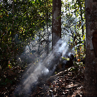 Leña para la elaboracion del Casabe. Kamarata. Edo. Bolivar. Firewood for cooking Cassava. Kamarata Edo. Bolivar. Febrero 23, 2013. Jimmy Villalta.