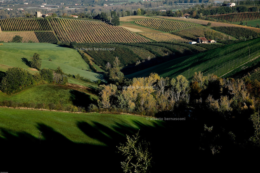 COVIBIO, COLLECTIVE wine producers , Italy, Emilia