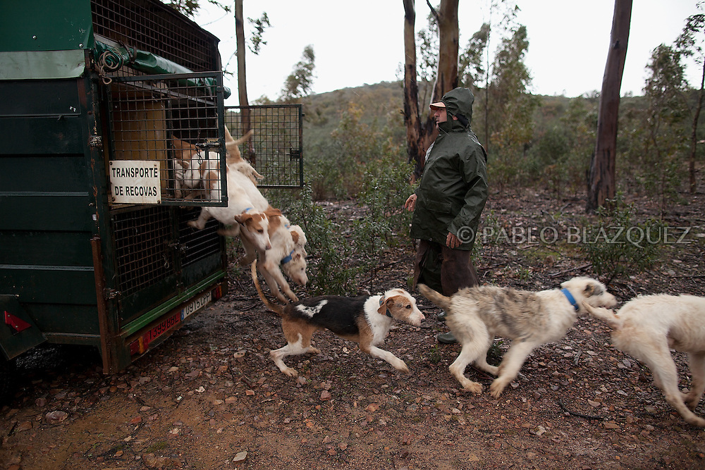 Hounds breeder Juan Carlos Pascual warms up before he release his dogs to start hunting near Carbajo on January 19 2013, in Caceres Province, Extremadura, Spain. .Caceres has a well preserved natural environment. Plenty of its surface is dedicated to deers and wild boars hunting, making this, an important part of its economy. But most of the land belongs to large landowners. .In Carbajo, people gather three times a year to hunt deers and wild boars. In the past, they used to hunt for eating, but now days, they practice it as an sport and a social event. Then, they sell what the catch as wild game meat.