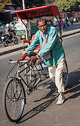 Man pulling rickshaw in Jaipur (India)