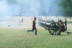 The King's Troop Royal Horse Artillery,  stage 41 Royal Gun Salute to mark the birth of the new royal baby in Green Park, London, UK.<br /> The Duchess of Cambridge gave birth to a boy at St.Mary's hospital in London yesterday, Monday, July 22nd  2013.<br /> London, United Kingdom<br /> Tuesday, 23rd July 2013<br /> Picture by Piero Cruciatti / i-Images