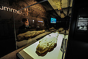 LOS ANGLELS, March 18, 2016<br /> <br /> Professor Ronn Wade of University of Maryland introduces a mummy made in the 1990s during the preview of the ''Mummies of the World: The Exhibition'' held at the Bowers Museum, California, the United States, March 17, 2016. The exhibition, featuring more than 150 artifacts, real human and animal mummies from across the globe, will kick off on March 18. (Xinhua/Zhang Chaoqun) (lyi)<br /> ©Exclusivepix Media