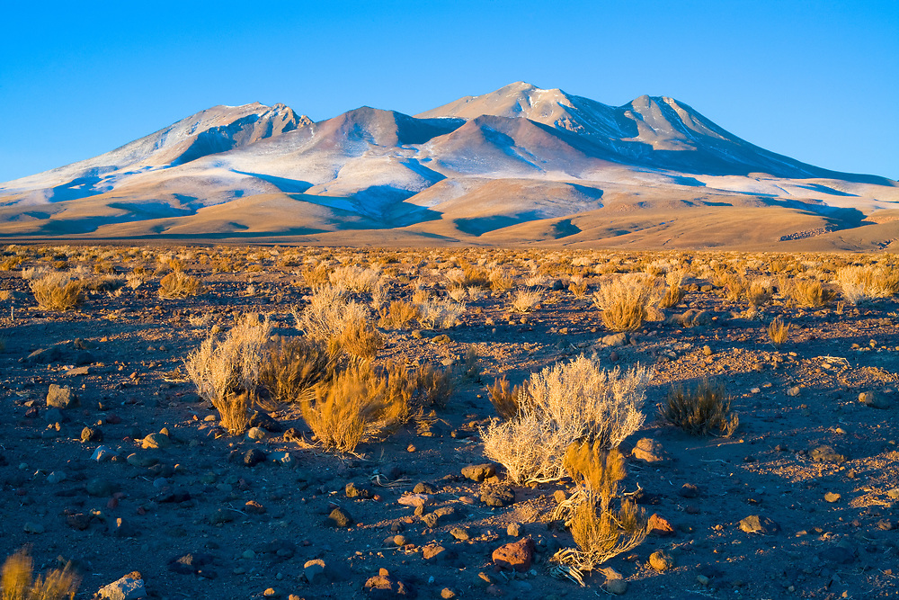 Hills in the Altiplano (High Andean plateau), Atacama desert, Chile, South America