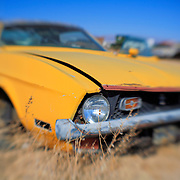 Mustang Death - Pearsonville, CA - Lensbaby