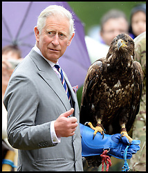 HRH The Prince Of Wales holds Zephyr the Eagle with visiting the Sandringham Flower Show<br /> Sandringham, Norfolk, United Kingdom<br /> Wednesday, 31st July 2013<br /> Picture by Andrew Parsons / i-Images