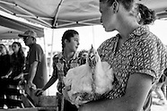 2015-8-15-Waushara County Fair