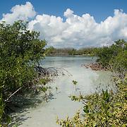 Sac Bajo at Isla Mujeres. Quintana Roo, Mexico.