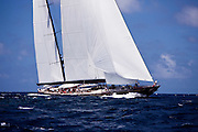 Marie Sailing in the 2011 St. Barths Bucket Race 2.