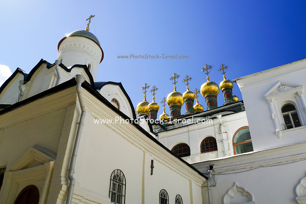 Domes of the Terem Palace (16th Century), The Kremlin, Moscow, Russia