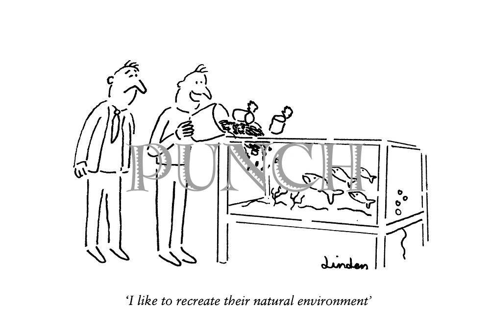 """I like to recreate their natural environment."""