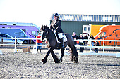 71 - 25th Nov - Dressage