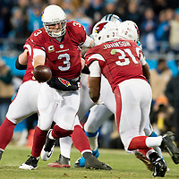 Arizona Cardinals quarterback Carson Palmer (3) hands off to Arizona Cardinals running back David Johnson (31)