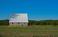 A barn with a steeply sloped white roof on a working farm
