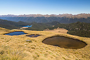 A blue-tinted and red-tinted tarn on Mt Burns Tarns Track
