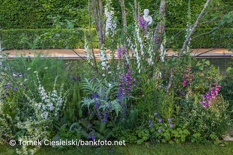 Mixed perrenials flower bed