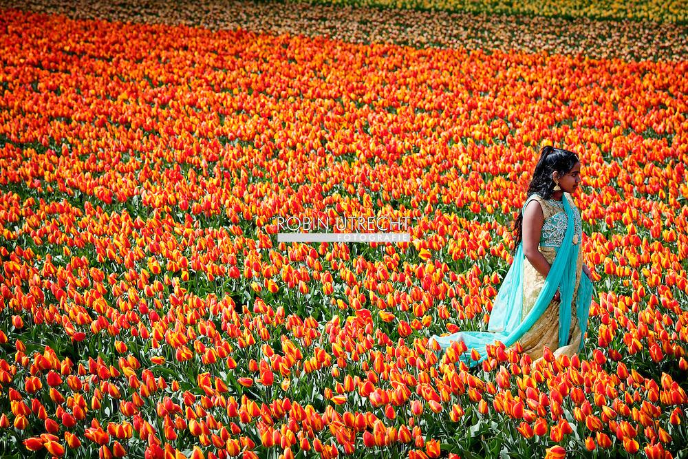 LISSE  - Visitors tourist, tourists from the tulip fields in Lisse taking pictures  each other between the tulips are in bloom. stands in the Keukenhof in bloom. Flower bulbs Bulb Region Economy enjoy hillegom Keukenhof Spring Lisse Netherlands pension retiree. Tourism tulips tulip field spring holiday COPYRIGHT ROBIN UTRECHTLISSE - Bezoekers toerist , toeristen van de tulpenvelden in Lisse fotograferen elkaar tussen de tulpen die in bloei staan.  staat in de keukenhof in bloei. bloembollen   Bloemen   Bollenstreek          Economie   genieten   hillegom   Keukenhof   Lente   Lisse   Nederland   pensioen   pensionado.      Toerisme   tulpen   tulpenveld   vakantiegeld   voorjaar COPYRIGHT ROBIN UTRECHT