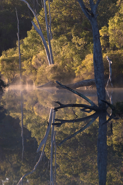 Early morning view of Margaret River