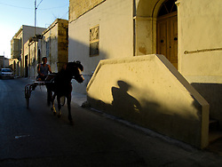 MALTA GOZO GHARB 20JUL06 - A man excercises his horse in the afternoon sun in the village of Gharb in western Gozo...jre/Photo by Jiri Rezac..© Jiri Rezac 2006..Contact: +44 (0) 7050 110 417.Mobile: +44 (0) 7801 337 683.Office: +44 (0) 20 8968 9635..Email: jiri@jirirezac.com.Web: www.jirirezac.com
