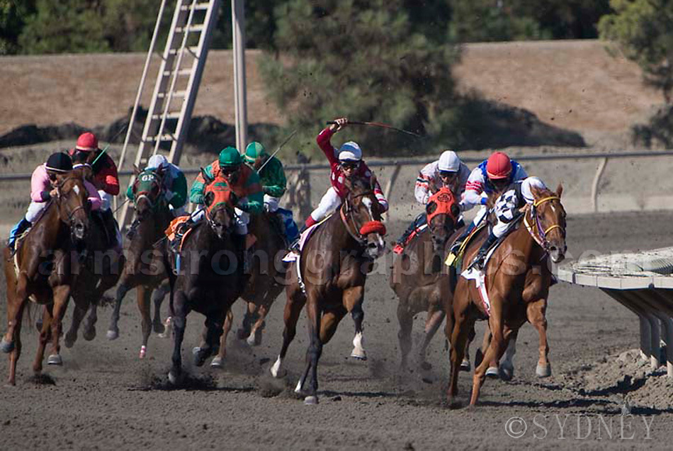 Horse Racing, The Final Stretch