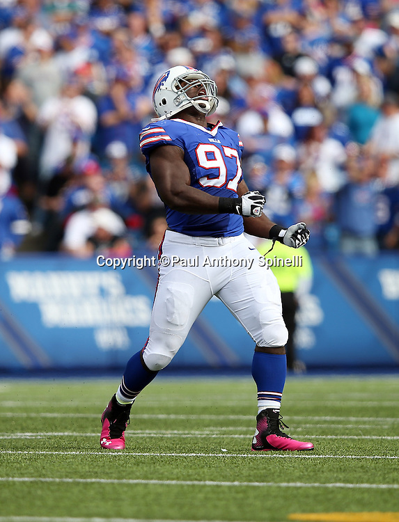 Buffalo Bills defensive tackle Corbin Bryant (97) yells and celebrates after sacking New York Giants quarterback Eli Manning (10) in the third quarter during the 2015 NFL week 4 regular season football game against the New York Giants on Sunday, Oct. 4, 2015 in Orchard Park, N.Y. The Giants won the game 24-10. (©Paul Anthony Spinelli)