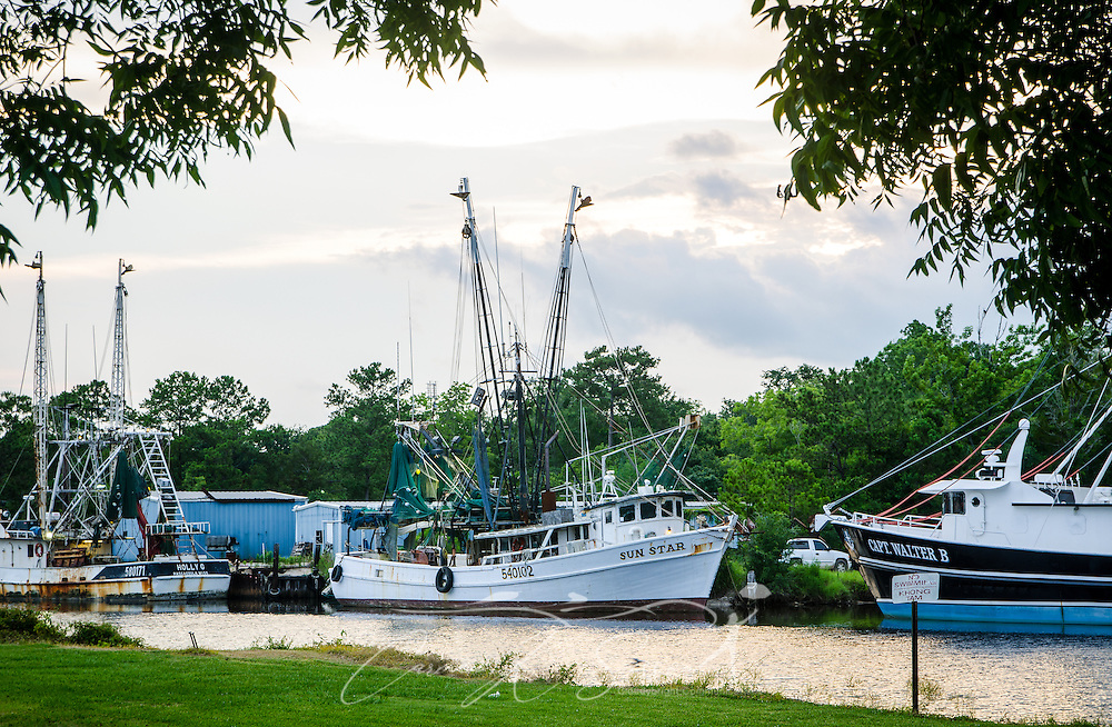 The sun sets on the Holly G, the Sun Star and the Capt. Walter B. shrimp boats, June 16, 2013, in Bayou La Batre, Ala. (Photo by Carmen K. Sisson/Cloudybright)