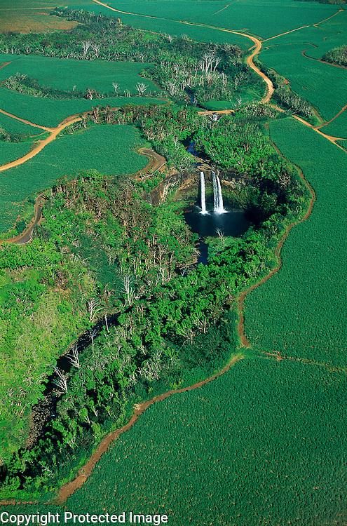 Aerial view of Wailua Falls among sugar cane fields, Kauai, Hawaii, USA.