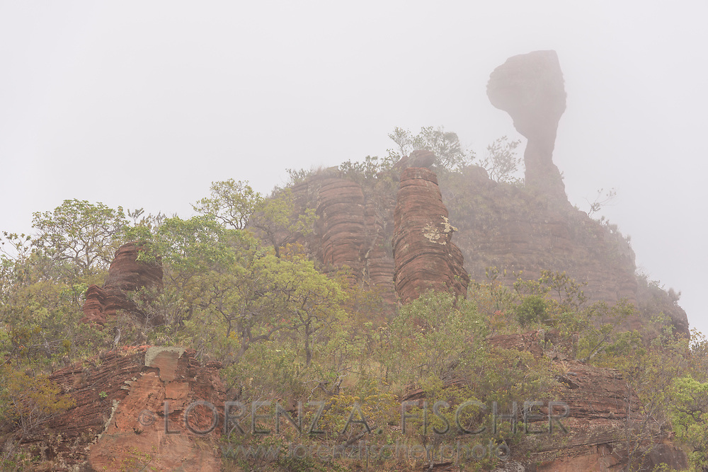 Felsformationen, Zacken und T&uuml;rme im Hochland, Chapada dos Guimaraes, Brasilien<br /> <br /> Rock formations, crags and towers in the highlands, Chapada dos Guimaraes, Brazil
