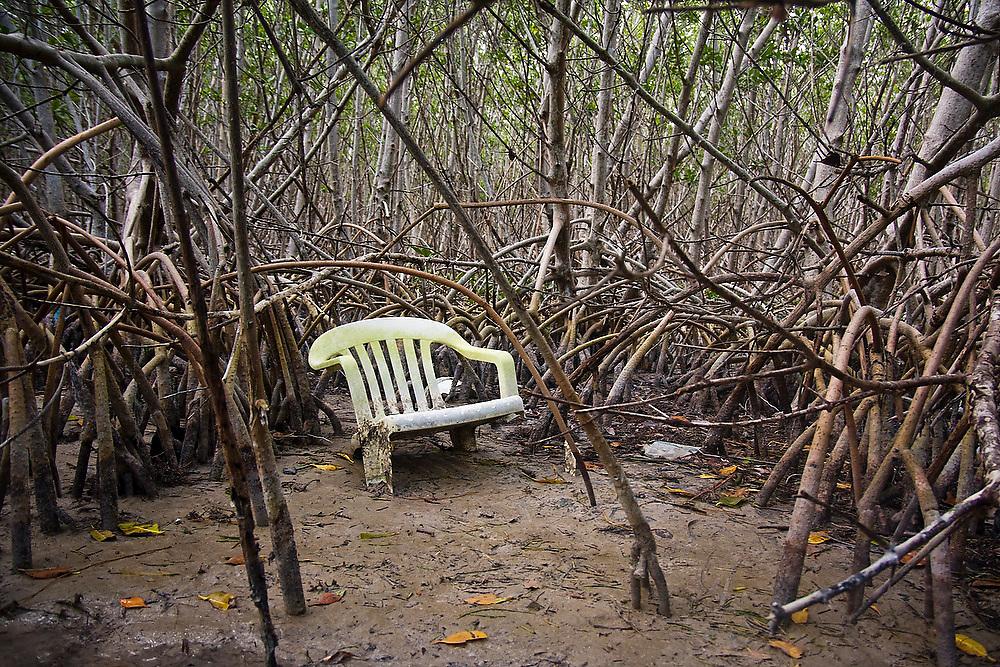 A broken plastic chair deep in mangroves on Islamorada in the Florida Keys.