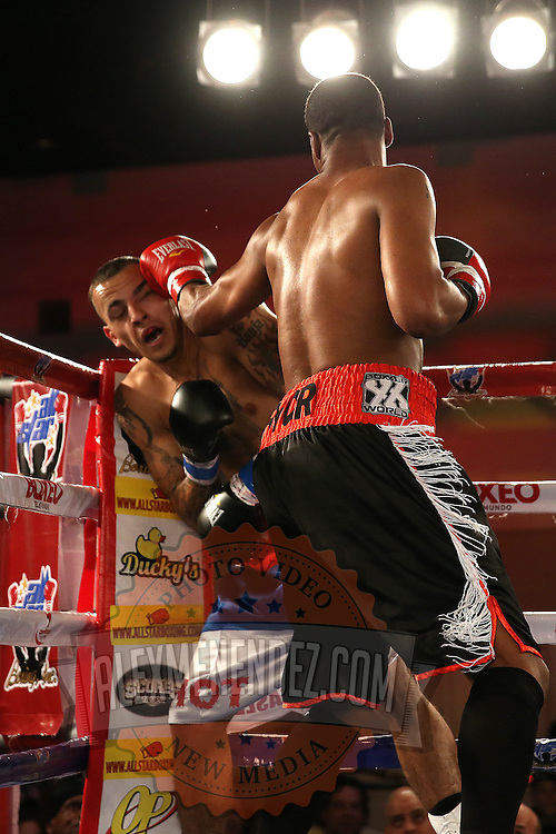 Larry Pryor (R) catches Radivvoje Kalajdzic with a left hook during the Telemundo Boxeo boxing match at the A La Carte Pavilion on Friday,  March 13, 2015 in Tampa, Florida.  Kalajdzic  won the bout after the referee stopped the fight. (AP Photo/Alex Menendez)
