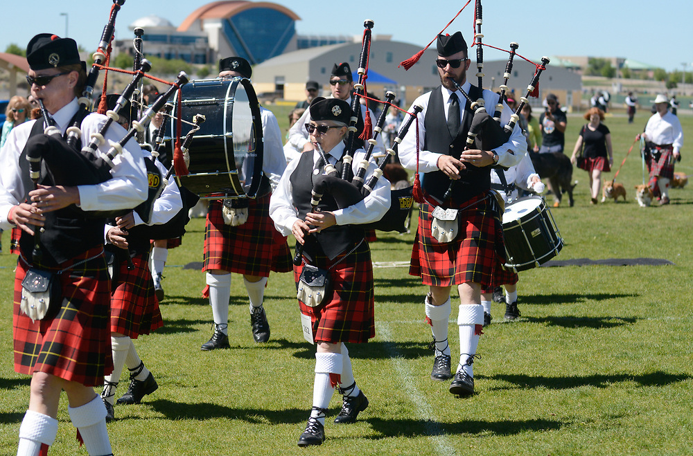 mkb052017l/metro/Marla Brose --  Bagpipers from High Desert Pipes and Drums parade around the festival grounds with a group of Celtic dogs and their owners during the 29th Annual Rio Grande Valley Celtic Festival at Balloon Fiesta Park in Albuquerque, N.M., Saturday, May 20, 2017. The event, which includes competitions, music, dancing and other Celtic traditions will continue Sunday. (Marla Brose/Albuquerque Journal)